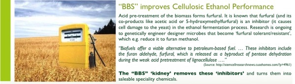 BBS improves Cellulosic Ethanol Production