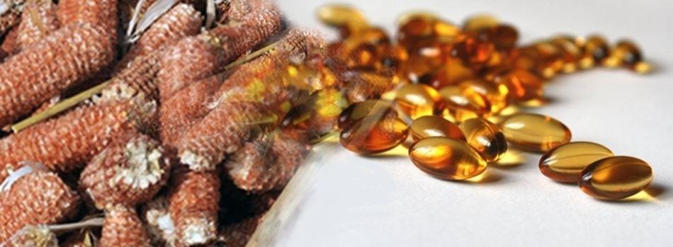 Biomass to Pharmaceuticals