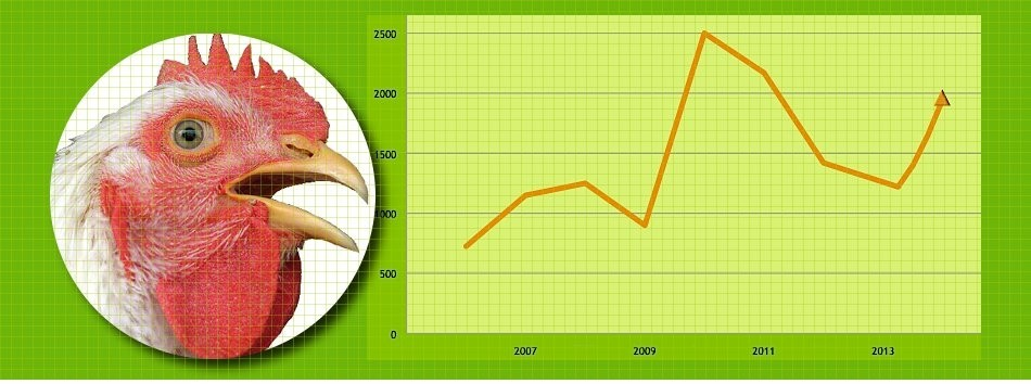 The Furfural Price & When The Chicken Sneeze In China