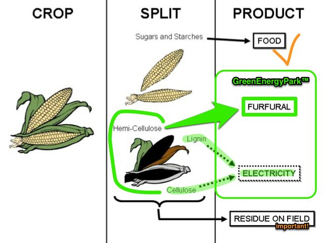 Maize to Corn & Cobs: Food, Energy& Chemicals (the stover stays behind)
