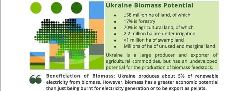 Ukraine Biomass: Concept Plan
