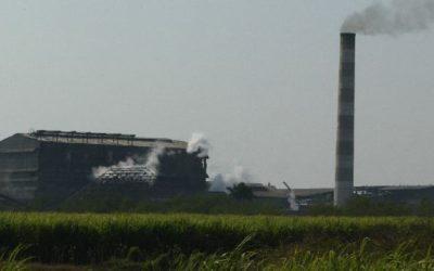 Bagasse and Blended Biomass Cogeneration: A Case for Furfural!