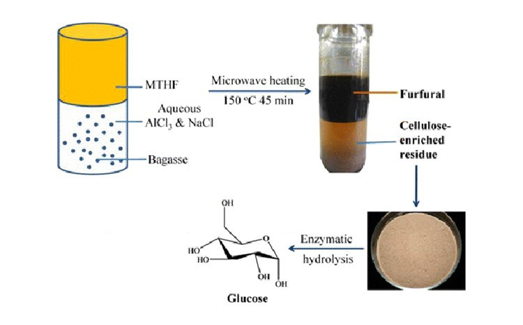Researchers Developed A Process for Simultaneous Production of Furfural and Hydrolyzable Cellulose