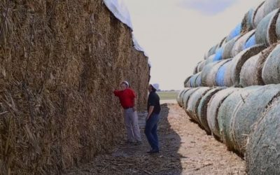 Biorefineries Give Local Farmers Opportunities for Additional Income