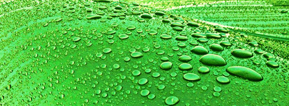Furfuryl Alcohol based Resins for Protective Coatings
